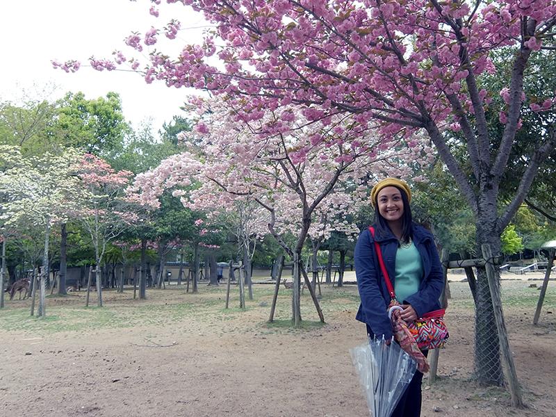 I Try DIY   Snapshots from Japan - Part 1: Nara