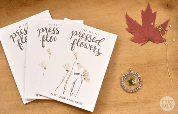 I Try DIY   Manila Bulletin: Pressed Flower Pieces at 10A Alabama