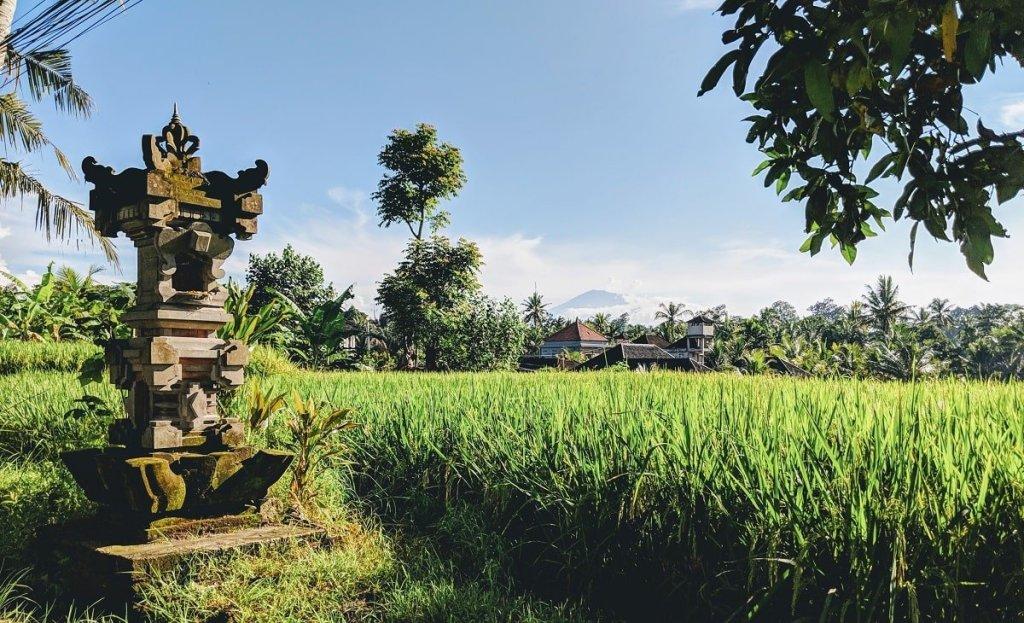 Bali - Insel der Gegensätze - It's a travel thing - Blog -Titelbild