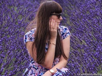 lavender-farm-very-dress-23