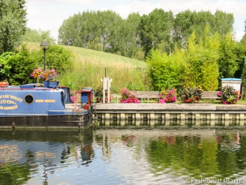 lee valley, hertfordshire, canal, river, dog, walk., countryside