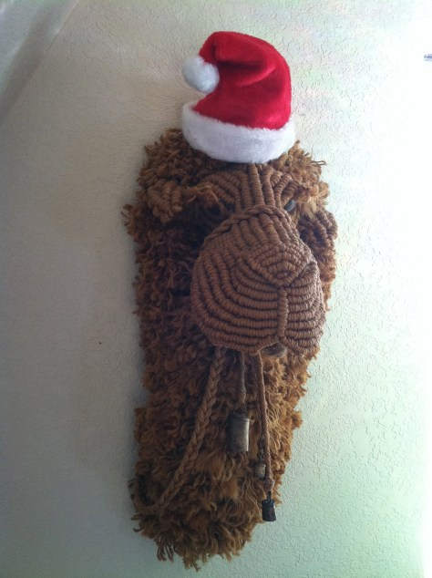 Overwhelmed and mesmerized by Christmas Santa Camel
