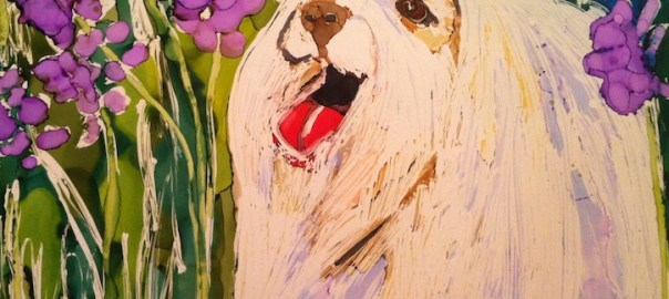 Maltese Day 18 of 30 Paintings In 30 Days