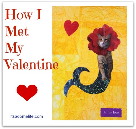 How I Met My Valentine