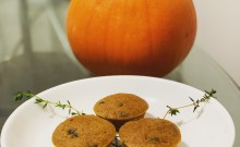 chocolate pumpkin mini muffins