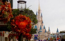 Fall decorations at Magic Kingdom.