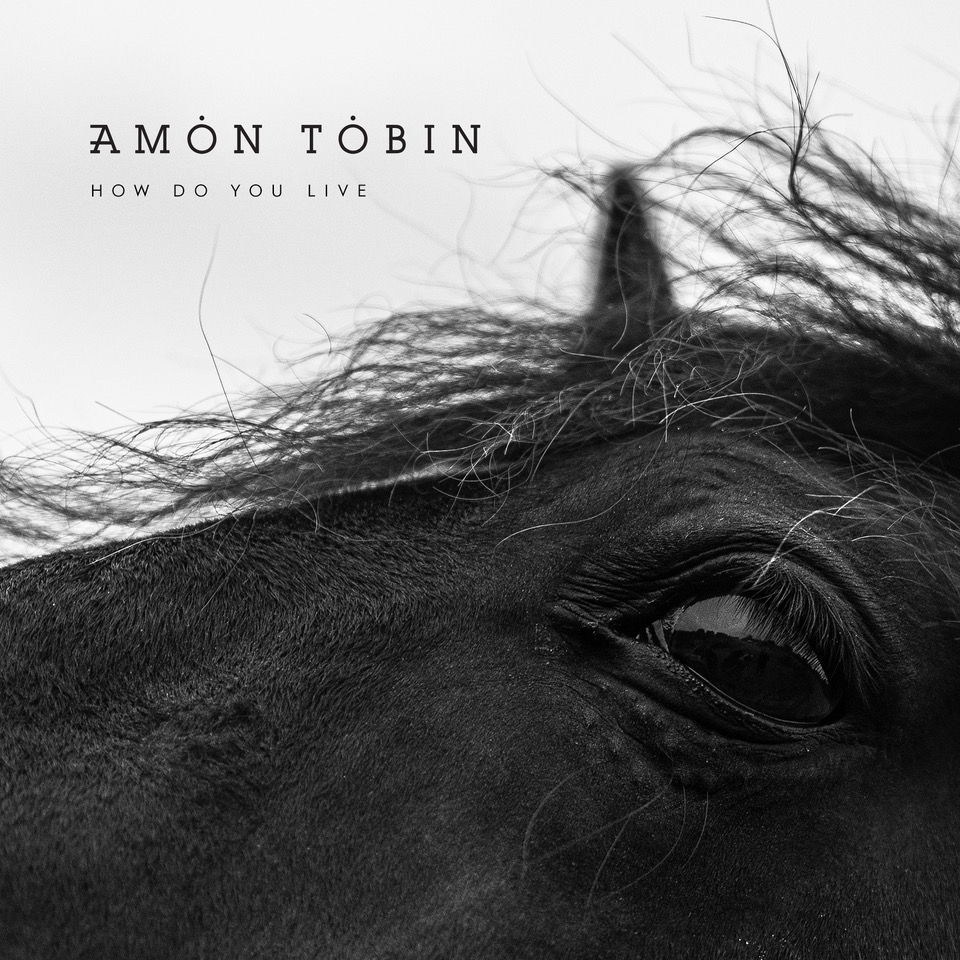 Amon Tobin's How Do You Live Out Today!