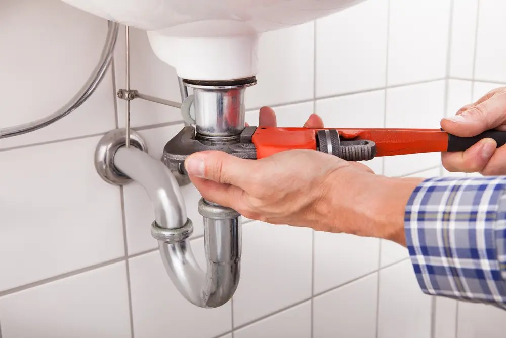 Plumbing Vent Maintenance in Bellingham