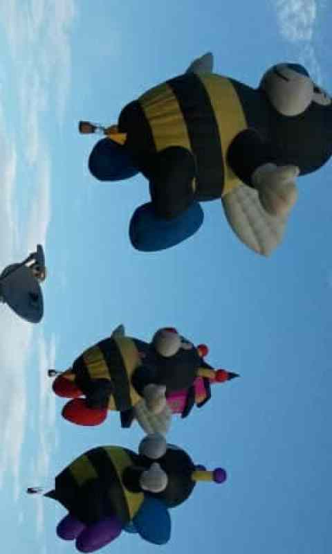 Its All About Satellites at Balloon Fiesta 2011