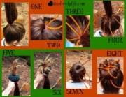 pumpkin bun-12 's lovely