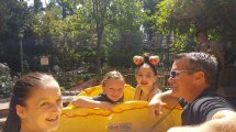 Disneyland Busy Day Guide Maximize Fun ' Lovely