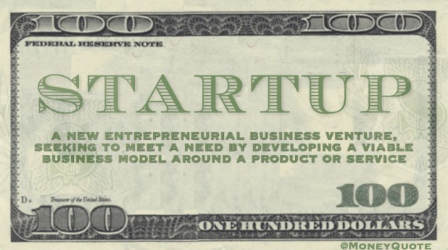 A new entrepreneurial business venture, seeking to meet a need by developing a viable business model around a product or service