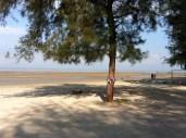 Great clean sandy beach