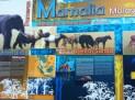 Malaysian Mammals Exhibition