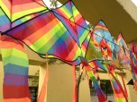Go fly kite!