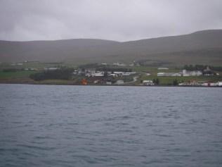 Whale-watching-akureyri-iceland