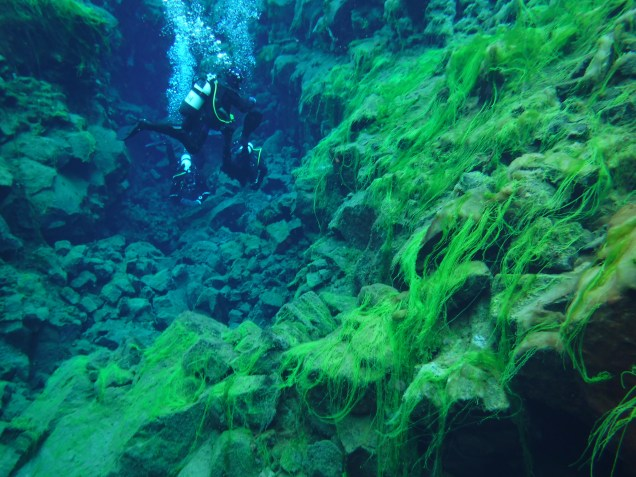 Snorkeling in Silfra Fissure in Thingvellir National Park, Iceland