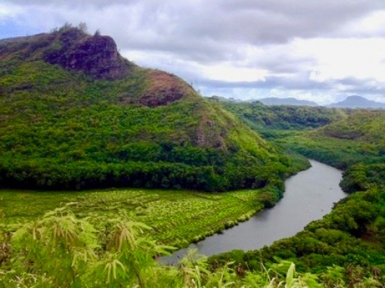 Stunning landscape, lush greenery of Kauai, hawaii