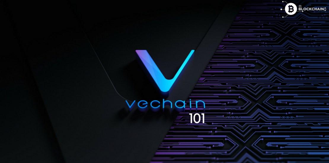 VeChain 101