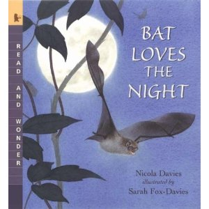 bat loves the night nicola davies