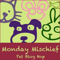 Bloghop-1