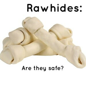 Rawhides: Are they safe?