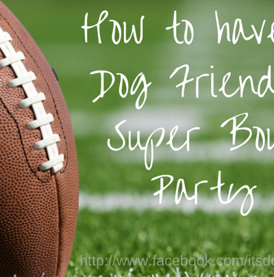How to Have a Dog Friendly Super Bowl Party