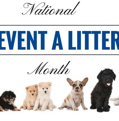Prevent a Litter Month