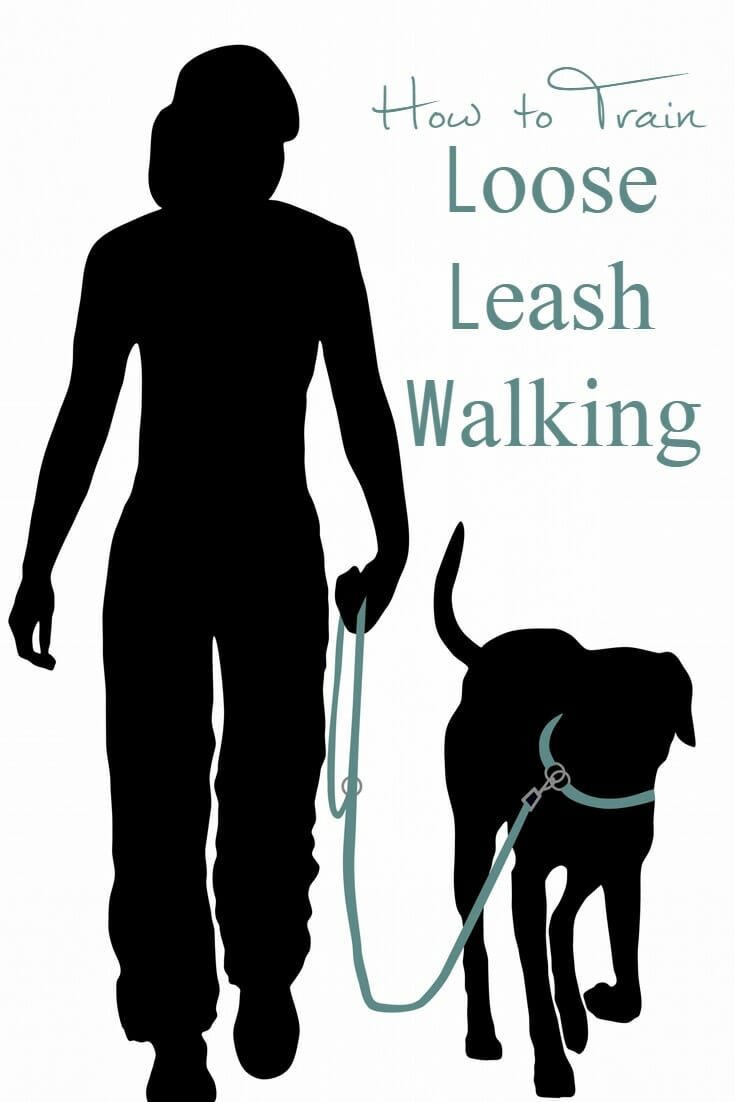 How to Train Loose Leash Walking - It's Dog or Nothing