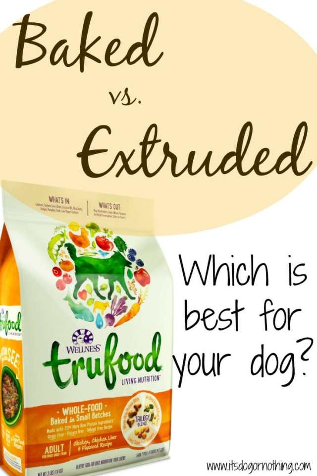 Baked vs. Extruded Dog Food - Do you know which is best for your dog?