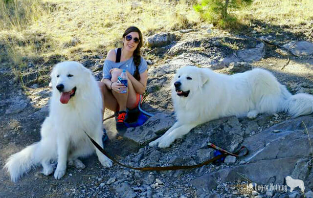 Great Pyrenees Hiking