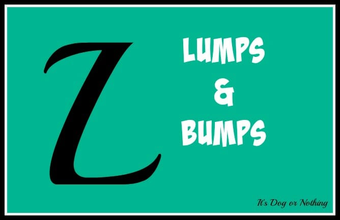 When it comes to giant breed health and nutrition, there's a lot that goes into raising a happy, healthy dog. We're going from A to Z talking about giant breed specific needs! Today, it's all about one of our worst fears - finding lumps and bumps on our dogs.