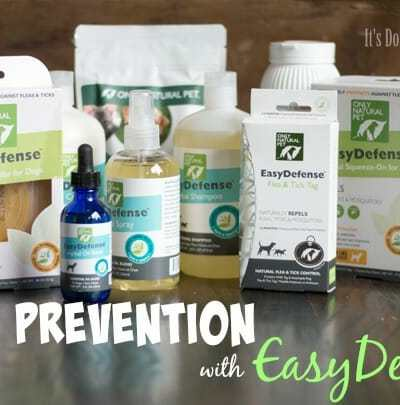 Pest Prevention with EasyDefense