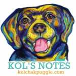 kolsnotes-small-372x400
