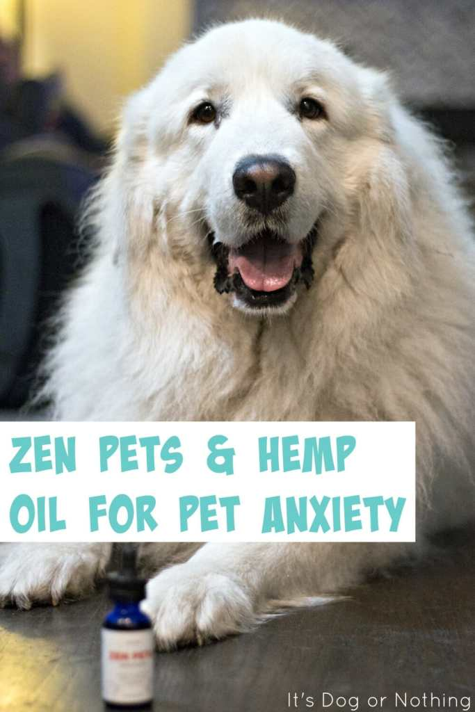 Does your dog suffer from anxiety or inflammation? Populum's Zen Pets may be the hemp oil solution you're looking for.