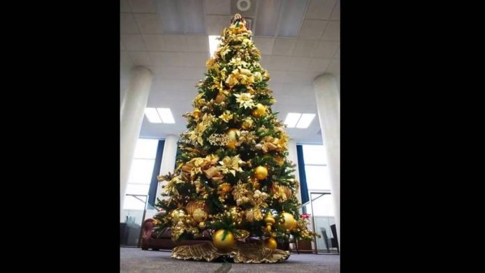 christmas-trees-decorated-in-gold-and-silver