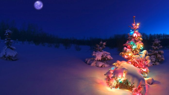 merry christmas hd wallpapers images free download 7
