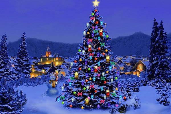 color-ideas-outdoor-christmas-tree-decorations