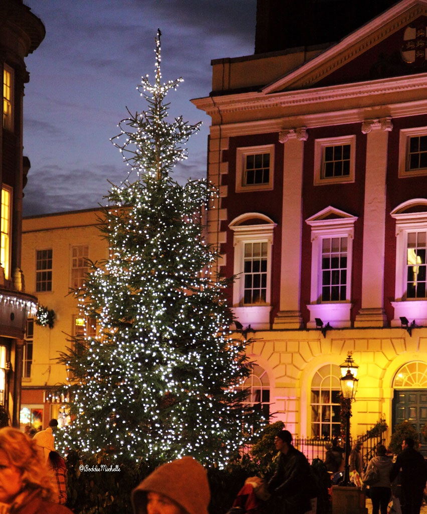 Christmas-Tree-in-Town-Square-@BoddieMichelle-@EverChristmas-126081