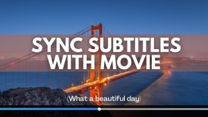 Synchronize Subtitles With Movie Linux