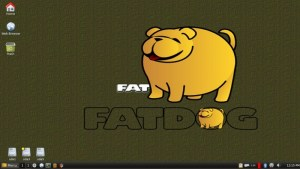 FatDogs64 Linux review