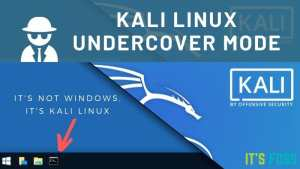 Kali Linux Undercover Mode