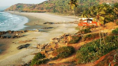Photo of Goan tourism past, present & the future