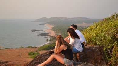 Photo of WHAT IS THE SCENE ON TOURISM IN GOA THIS YEAR?
