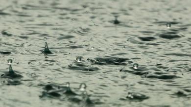 Photo of Save money, you Goans! – Start harvesting rain