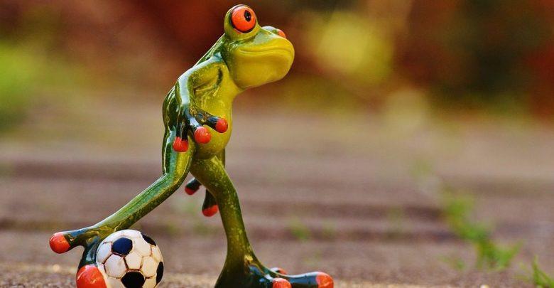 https://pixabay.com/en/frog-football-funny-cute-play-1175599/