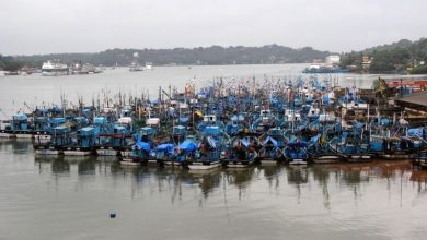 Photo of NGO asks for the annual fishing ban to be extended to 90 days
