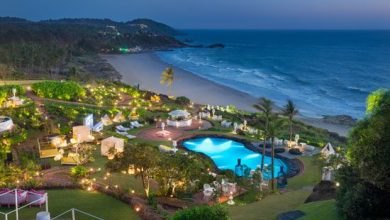 Photo of W Goa Reopens Rockpool For The Coming Season