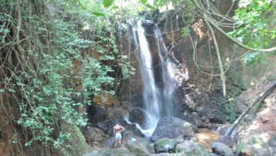 Photo of GTDC to bring back Goa's beloved Kesarval Spring in Verna