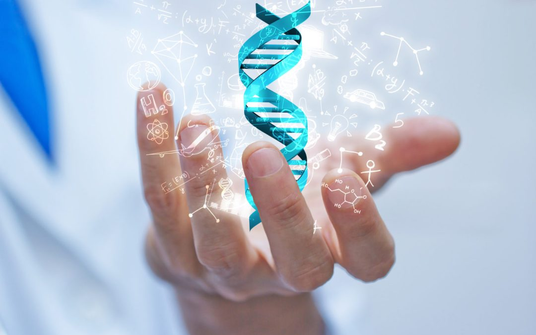 How to Choose the Best Quantigene Services for Fast and Accurate Results